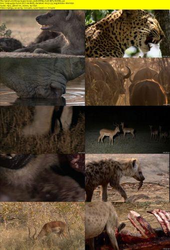 Africas Super Seven 2008 2 دانلود مستند هفت حیوان برتر آفریقا