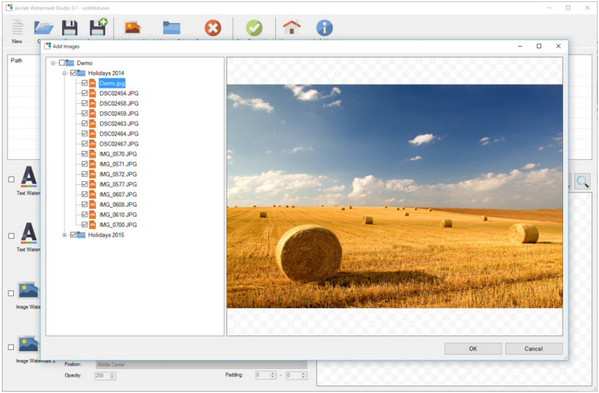 Arclab  دانلود Arclab Watermark Studio 3.1 نرم افزار اضافه کردن لوگو به تصاویر