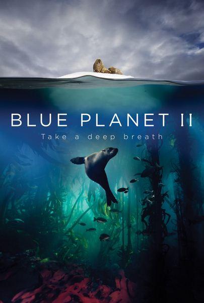 Blue Planet II 1 دانلود فصل دوم مستند سیاره آبی