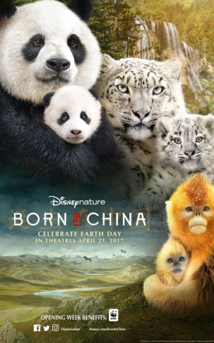 Born in China دانلود مستند متولد چین