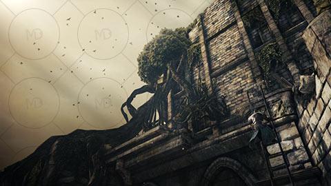 Dark Souls II 4 دانلود بازی Dark Souls II