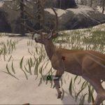 Deer Hunter Reloaded 5 150x150 دانلود بازی Deer Hunter Reloaded برای کامپیوتر