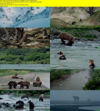 Land of the Bears 2 دانلود مستند سرزمین خرس ها