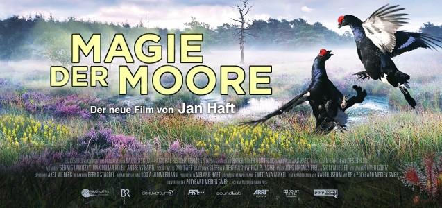 Magie der Moore 2015 1 دانلود مستند جادوی مور