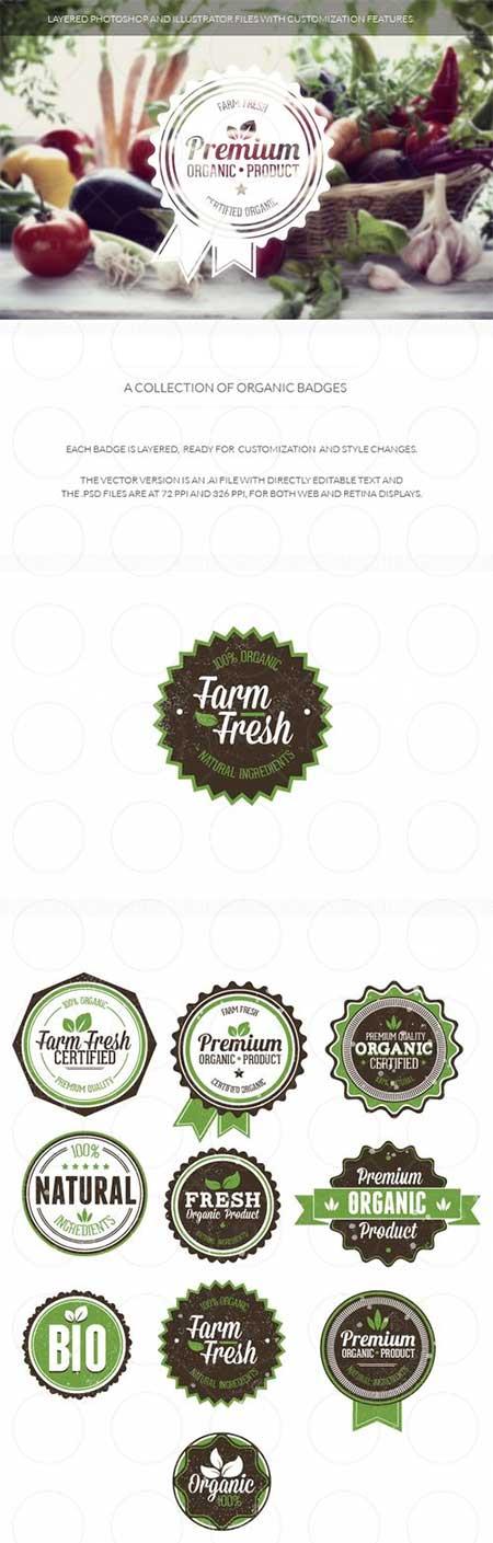 Organic Badges Set دانلود وکتور لیبل های آماده Organic Badges Set