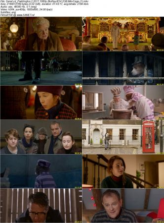 Paddington 2 2 دانلود فیلم Paddington 2