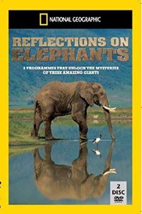 Reflections On Elephants 1994 1 دانلود دوبله فارسی مستند فیل ها