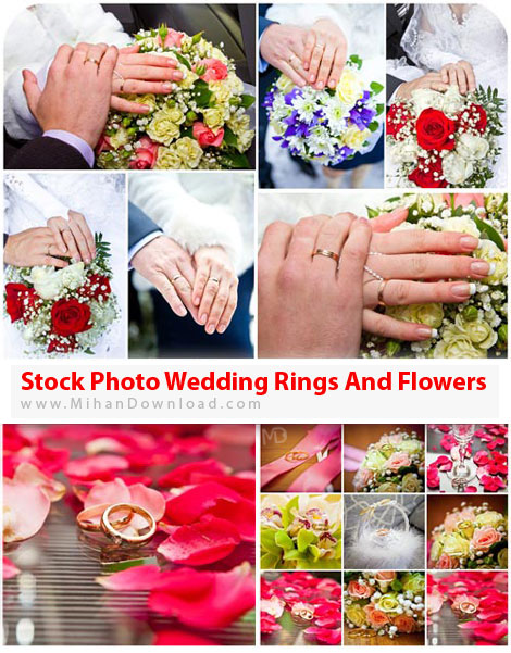 Stock Photo Wedding Rings And Flowers دانلود عکس حلقه عروسی و گل Stock Photos Wedding Rings And Flowers