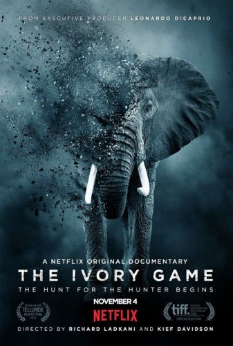 The Ivory Game 2016 1 دانلود مستند The Ivory Game 2016