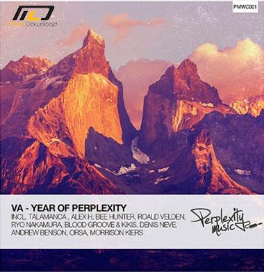 VA Year Of Perplexity Mixed by Bee Hunter 2015 دانلود آلبوم موسیقی Year Of Perplexity Mixed by Bee Hunter