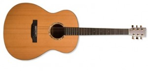 Video Guitar Lesson 300x144 فیلم آموزش مقدماتی گیتار