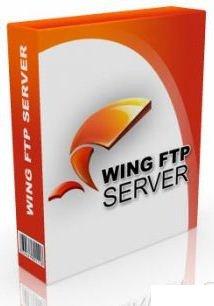 Wing FTP Server دانلود نرم افزار ایجاد اف تی پی سرور Wing FTP Server Corporate Edition 4.1.3