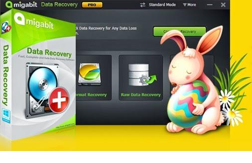 data recovery دانلود نرم افزار بازیابی اطلاعات Amigabit Data Recovery Professional 2.0.7.0