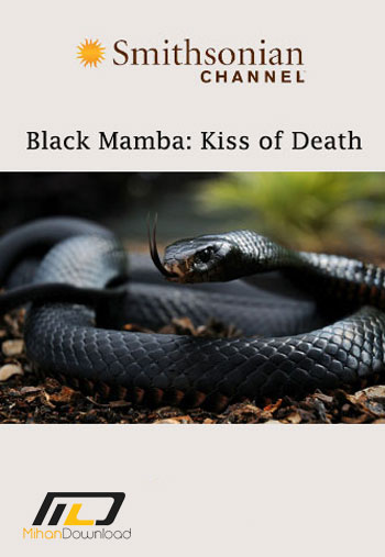 mamba1 دانلود مستند Black Mamba: Kiss of Death 2015
