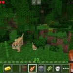 minecraft photo2 150x150 دانلود بازی Minecraft v1.0.2.1 ماینکرافت برای آندروید