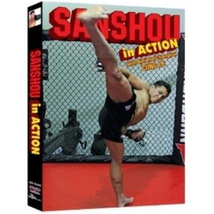 sanshou fighting فیلم آموزش ووشو به سبک سانشو