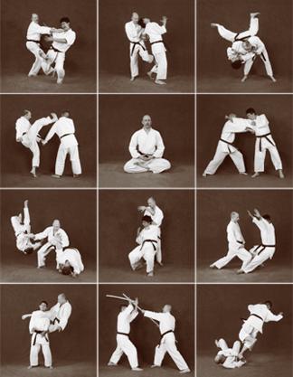 whatishapkidophoto دانلود آموزش های رزمی هاپکیدو Hapkido