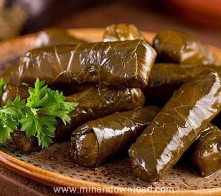 آموزش غذا ایرانی دلمه با برگ مو