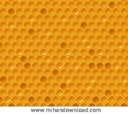 آموزش طراحی کندوی عسل در Adobe Illustrator