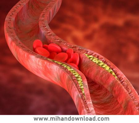 آموزش گردش خون ساختار و عمل قلب