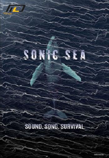 Sonic-Sea-2016