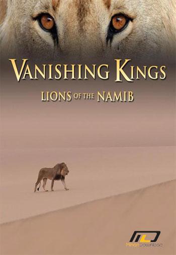 Vanishing Kings Desert Lions of Namib